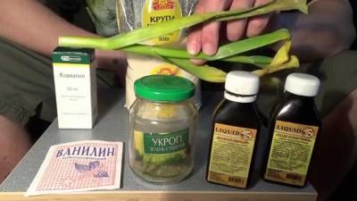 Домашние ароматизаторы