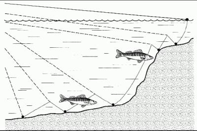 Схема ловли на спиннинг в мае