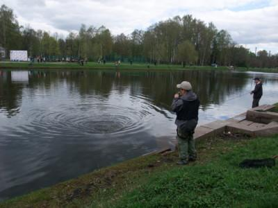 Рыбалка на пруду