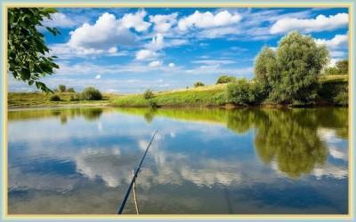 Ловля окуня на спиннинг летом в июне, июле, августе: приманки, как поймать утром и с берега