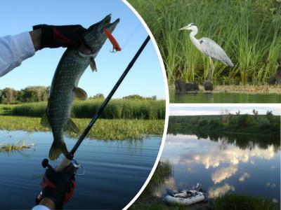 Где можно рыбачить на спиннинг? Спиннинг на озере и в пруду