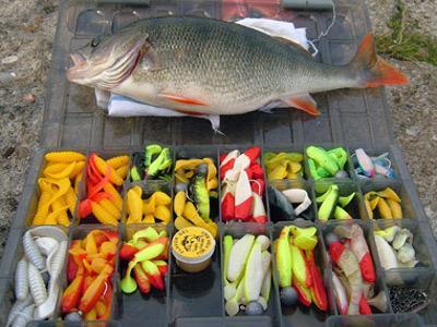 фишинг рыбалка