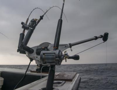 Особенности и нюансы рыбалки