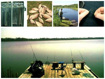 Особенности выбора поводка для ловли карася